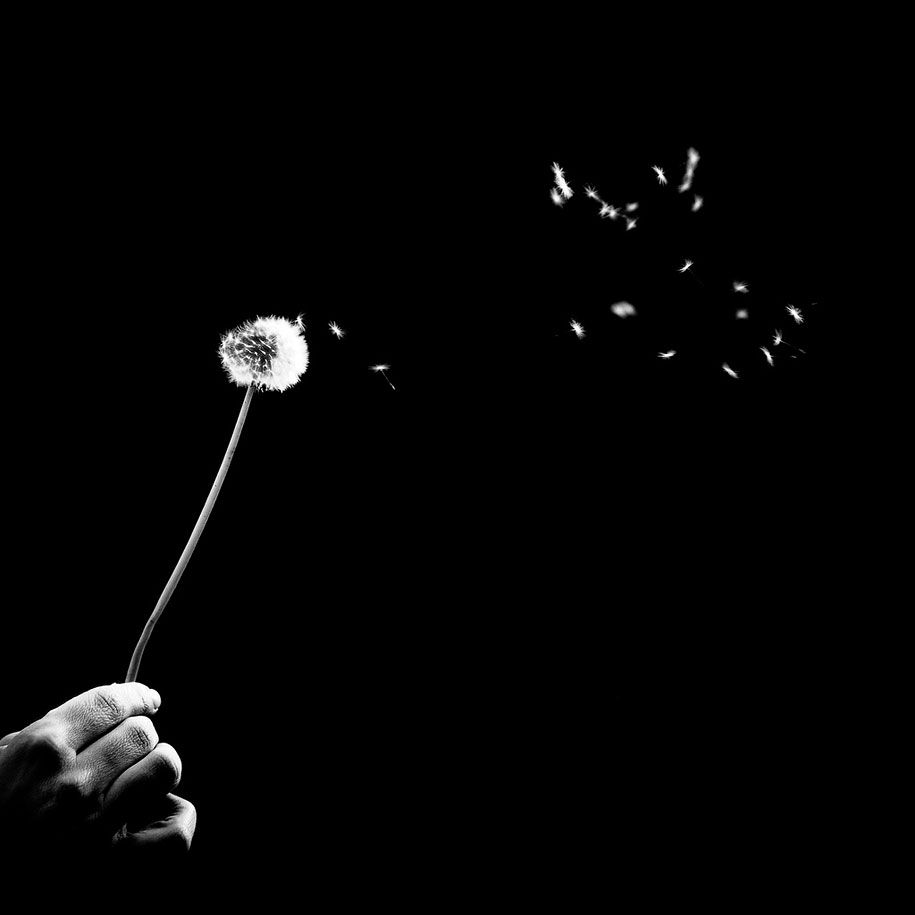 Striking black and white photography by benoit courti d wolf in