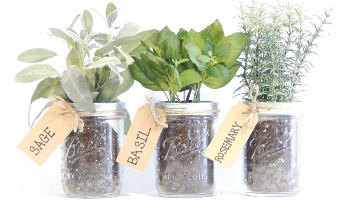 Kitchen Herb Kit Settee For Table Mason Jar Kits Garden Pinterest Herbs No Need This Is An Easy Do It Yourself Idea Pint Jars Organic Soil Rocks Label Twine And Seeds