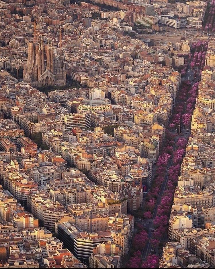 Barcelona Barcelona Cidade Viagens Espanholas Lugares Maravilhosos