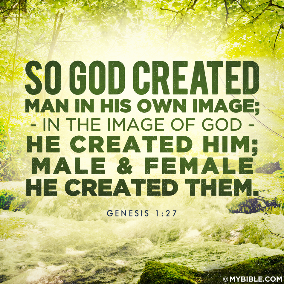 The Key To A Purposeful Life Genesis Bible Genesis 1 27 Genesis 1