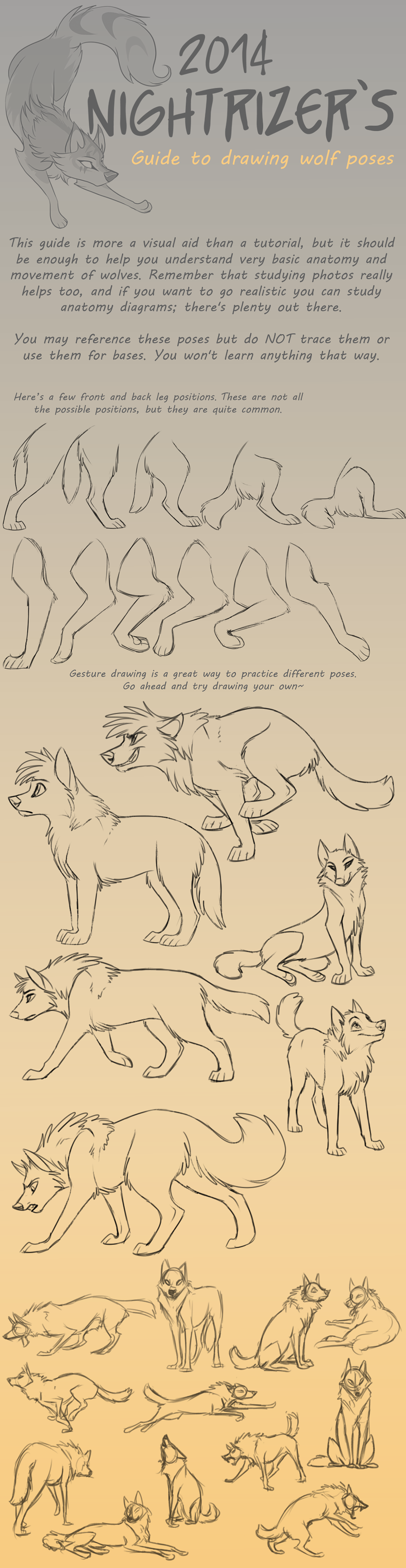 Guide To Drawing Wolf Poses By Nightrizeriantart On @deviantart