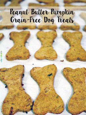 Grain Free Peanut Butter Pumpkin Dog Treats Recipe Dog Treats