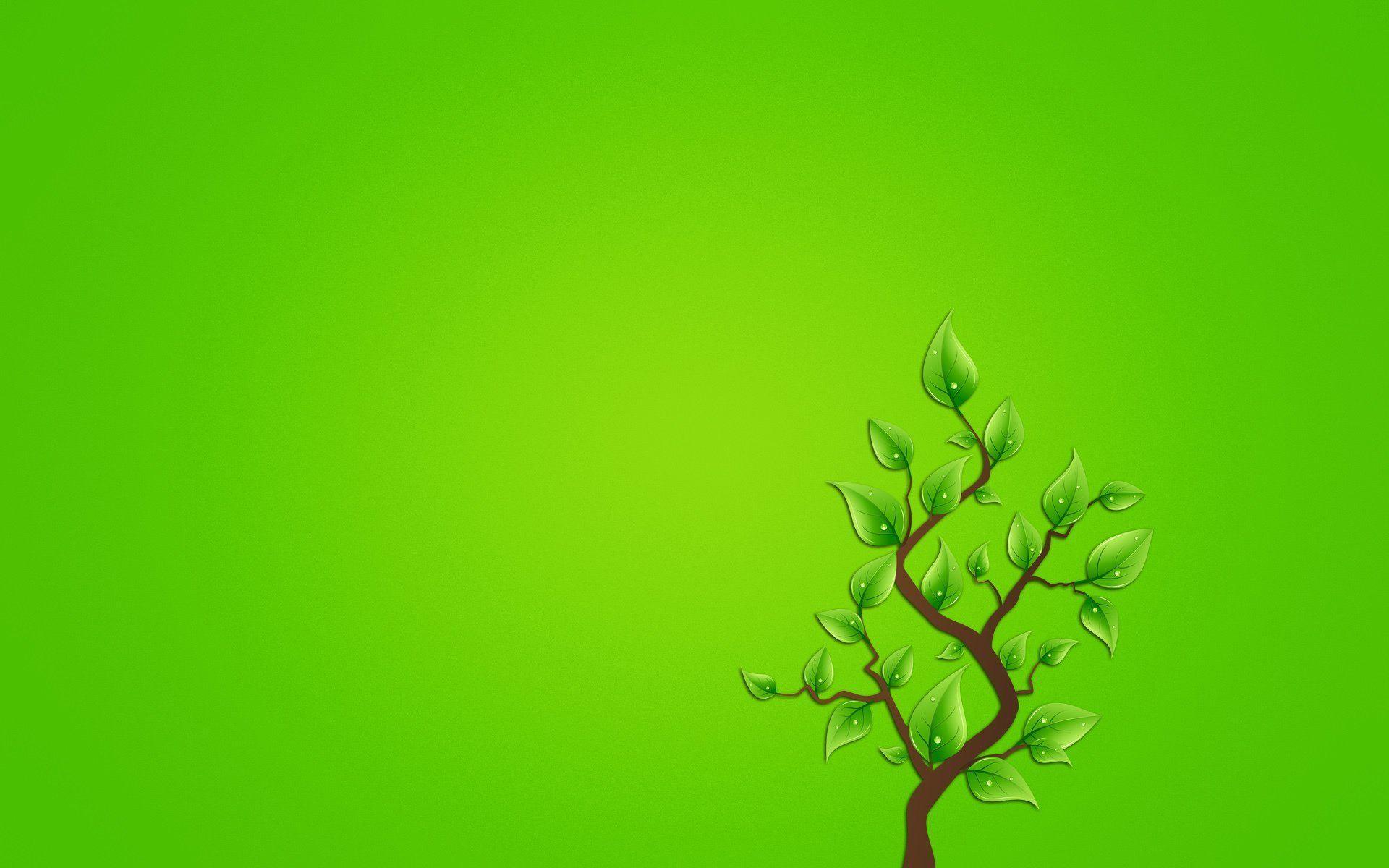 Августа успение, зеленая открытка