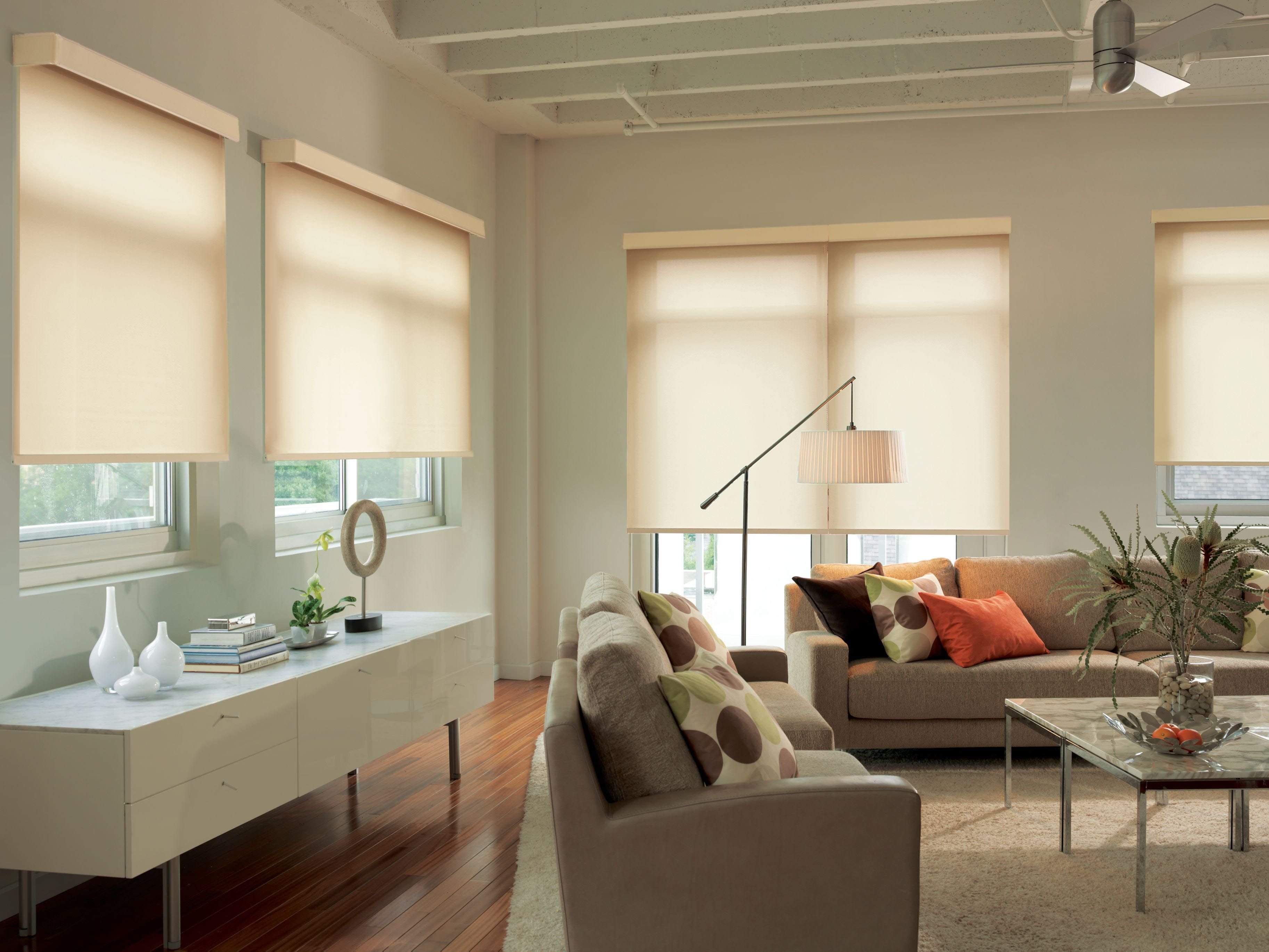 shade on blinds shipping shades trends attachment cordless bamboo over roman free rhoverstockcom ideas tortoise window natural orders