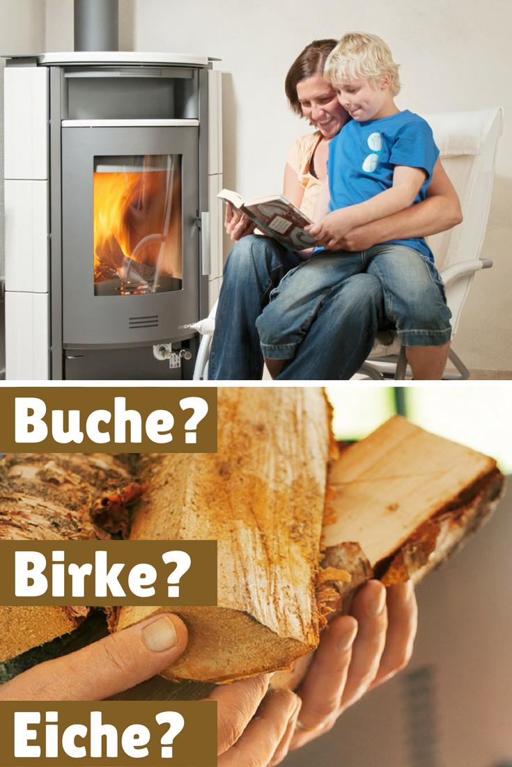 Kamin Nachrüsten | Pinterest | Birken, Eiche Und Feuer