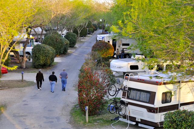 Austin Lone Star Carefree Rv Resorts At Austin Texas Rv Parks Travel Sights Campground