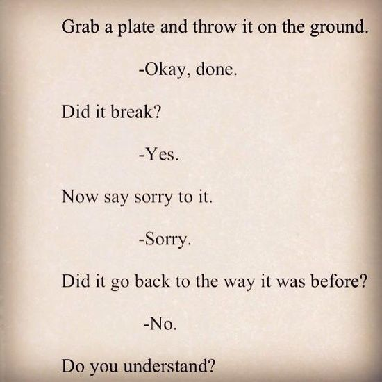 Grab a plate and throw it on the ground. -Okay, done. Did it break? -Yes Now say sorry to it. -Sorry. Did it go back to the way it was before? -No. Do you understand?