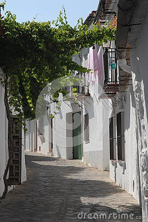 Photo made in Grazalema-El Bosque-Benaojan Andalusia (Spain). The picture shows a typical narrow street of the village with cobbled rock. You can see the white facades of some houses on the right and the branches of a vine plant left.