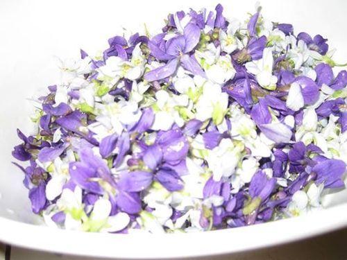 Linda Boyden's Famous Violet Jelly