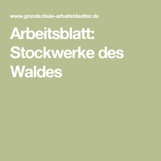 Arbeitsblatt: Stockwerke des Waldes | Stockwerke des waldes ...