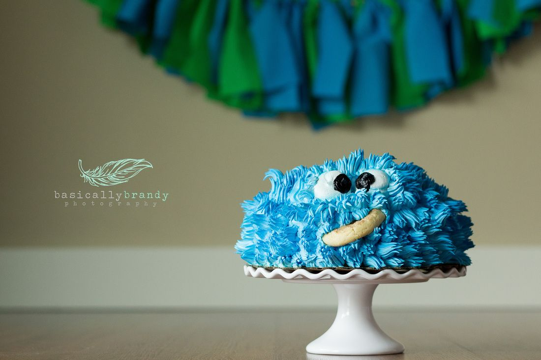 One year old baby boy. smash cake. baby boy portrait idea. photography.