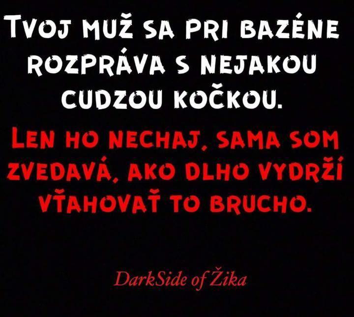 https://www.modrykonik.sk/blog/siska8800/album/srandicky-ksdsi6/29557981/