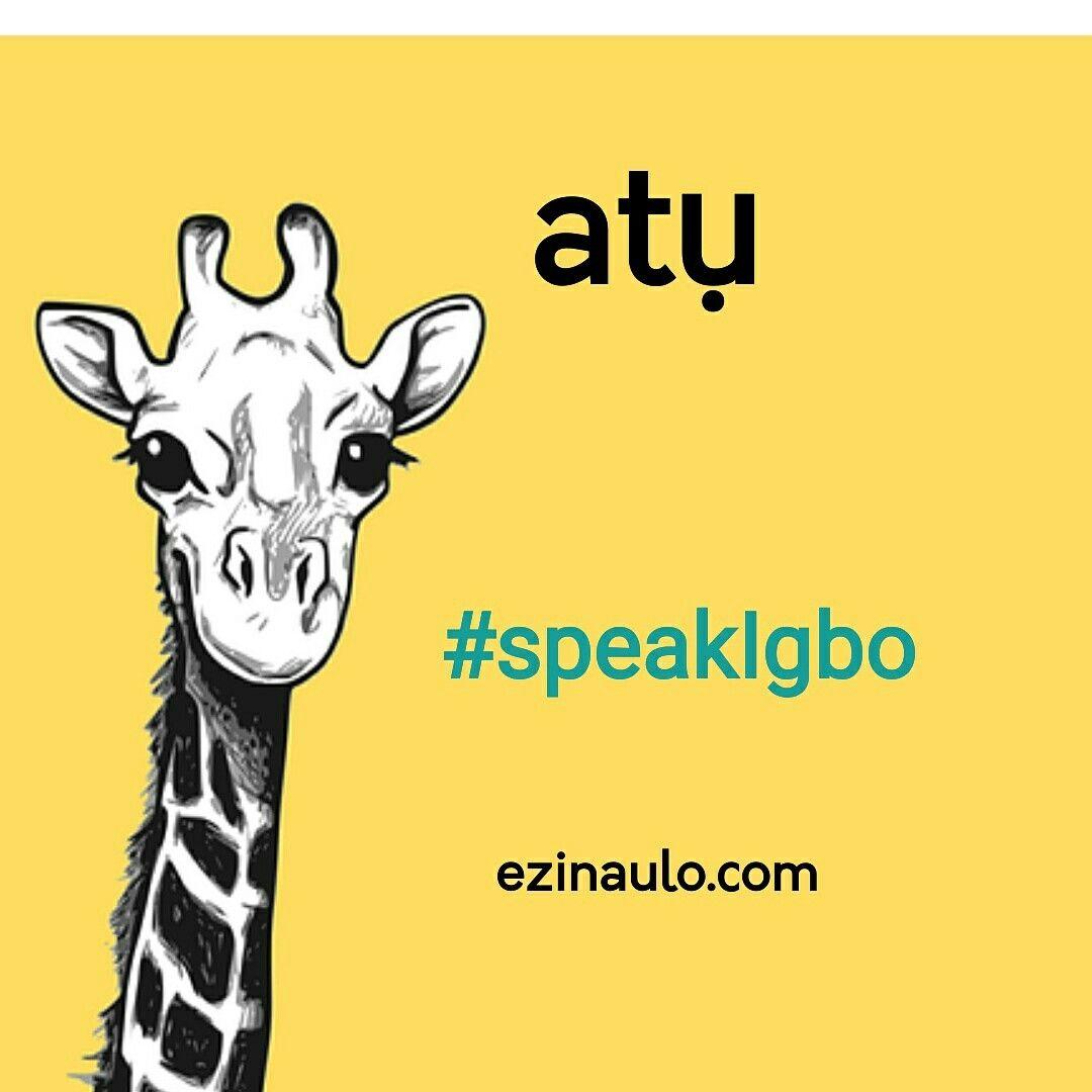 Atu - giraffe in Igbo language  Animal vocabulary  | Igbo Language