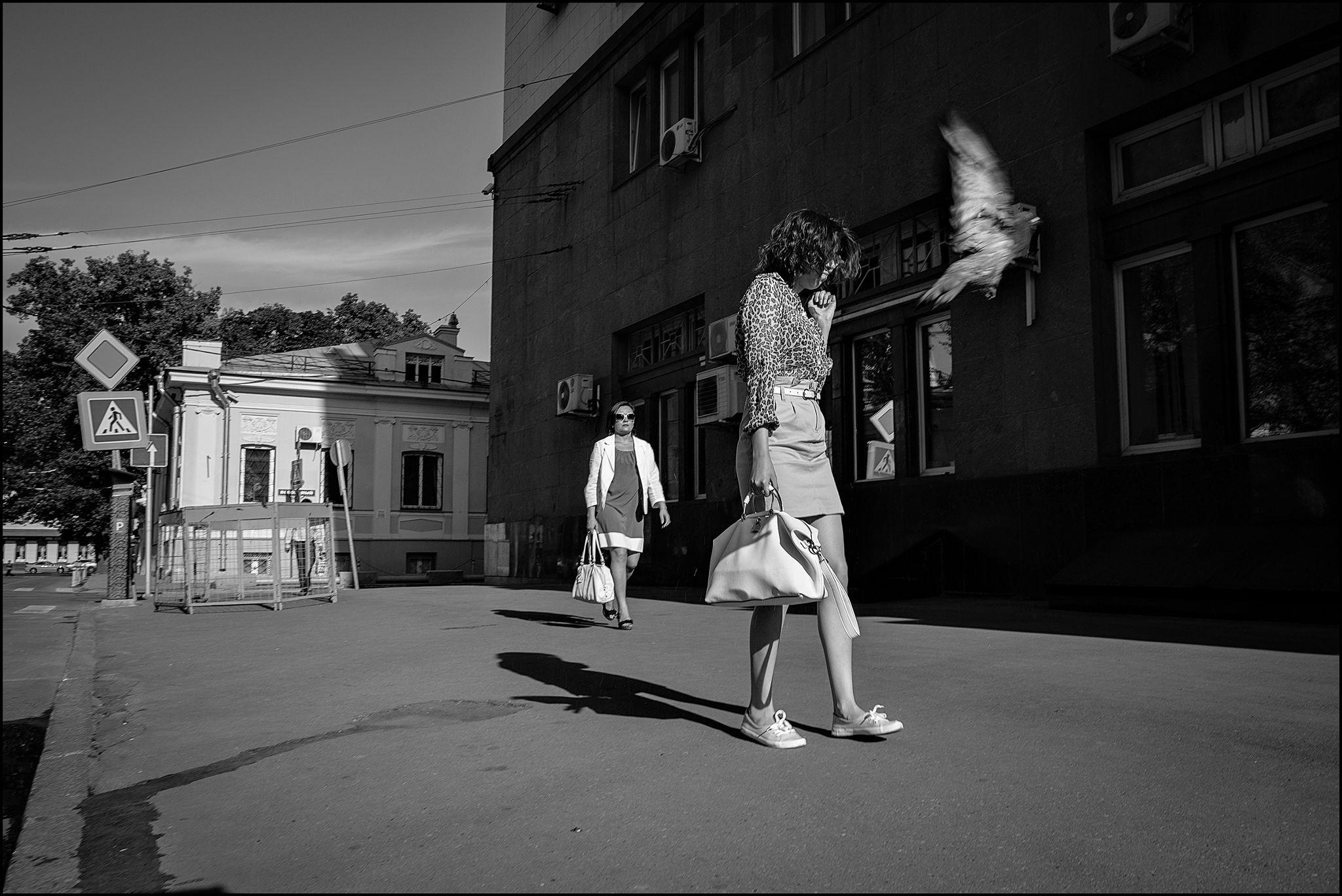 0A7_DSC6658.. by Dmitry Ryzhkov on 500px