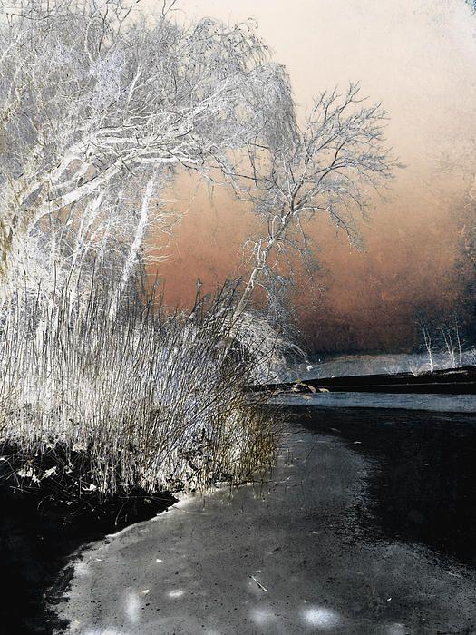 Winter Shroud by Shawna Rowe #framedprints #canvasprints #winter #gothic #dark #phonecases #cards