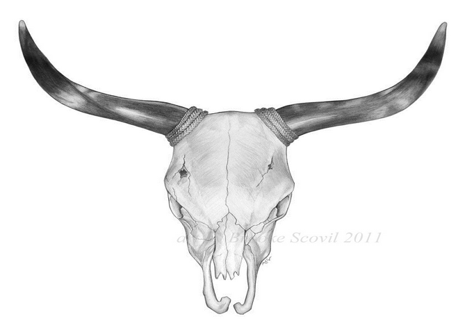 Bull Skull Bull Skull Tattoos Bull Skulls Cow Skull Tattoos