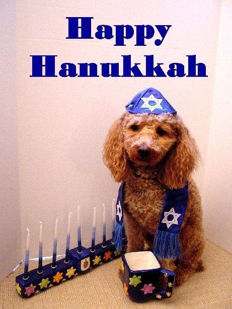 #HappyHanukkah