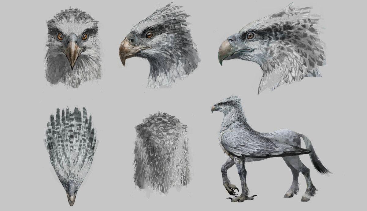 Buckbeak Harry Potter Drawing Harry Potter Tattoos Phantastische Tierwesen Harry Potter Zeichnungen