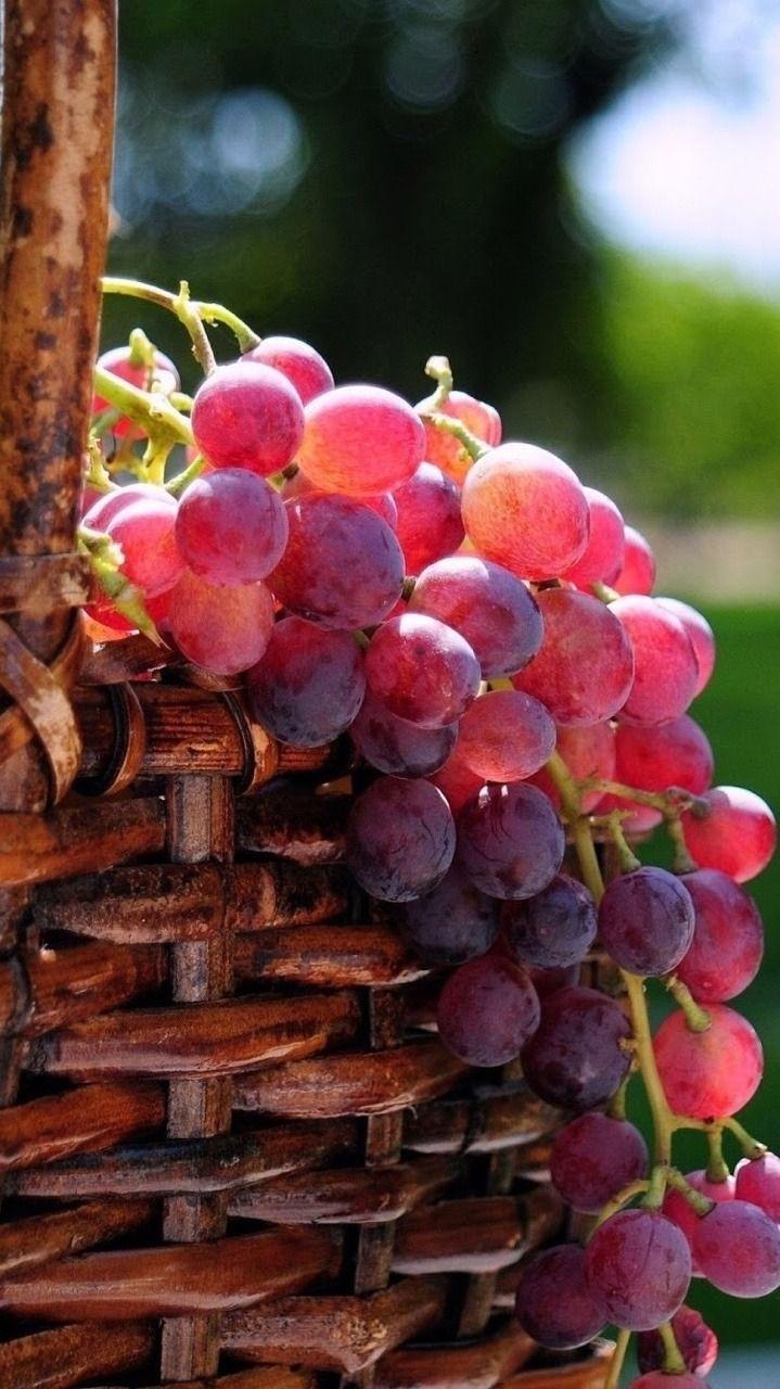 Fabulous Fruit Wallpaper Fruit Photography Fruit