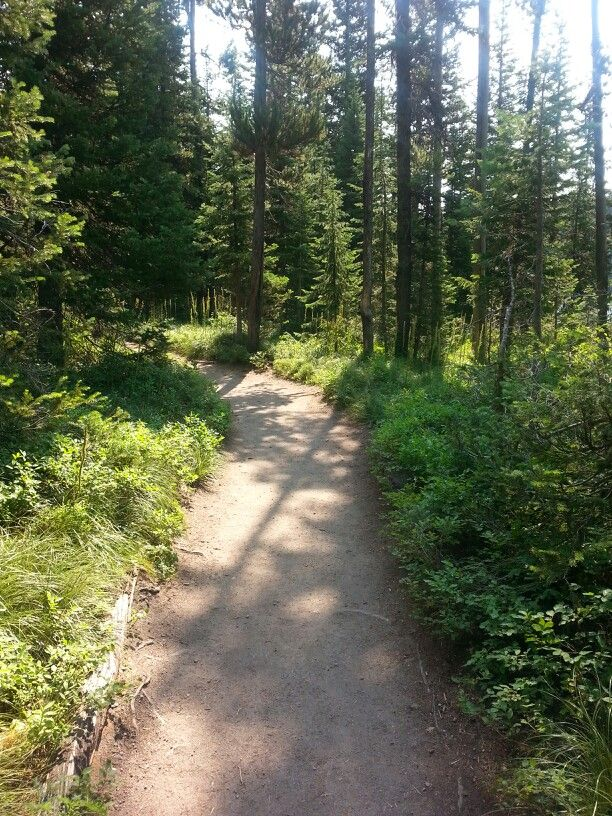 Trail south of Yellowstone near Lake of The Woods.