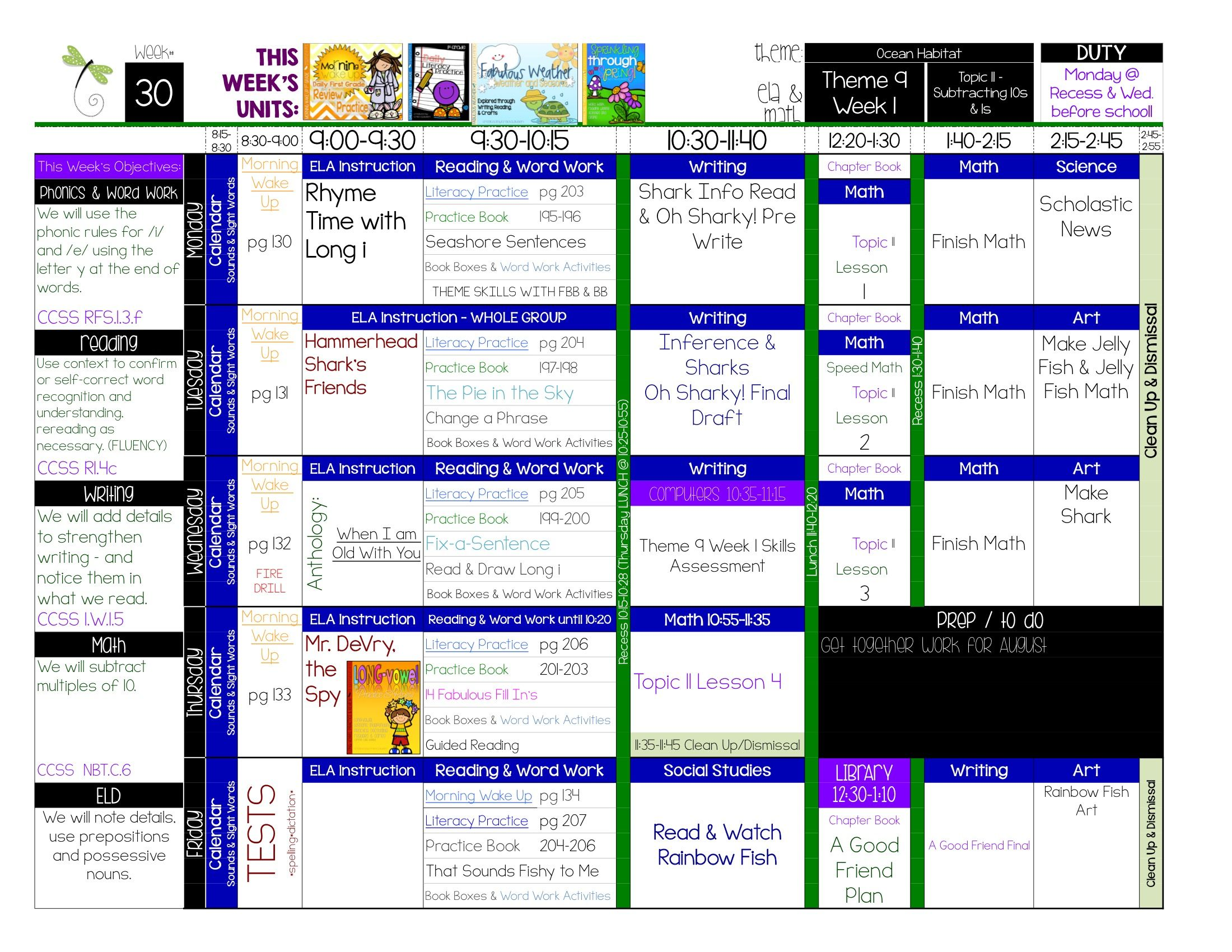 Teacher binder editable digital printable plan book for Special education schedule template