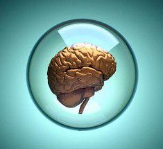 Как мозг предсказывает будущее