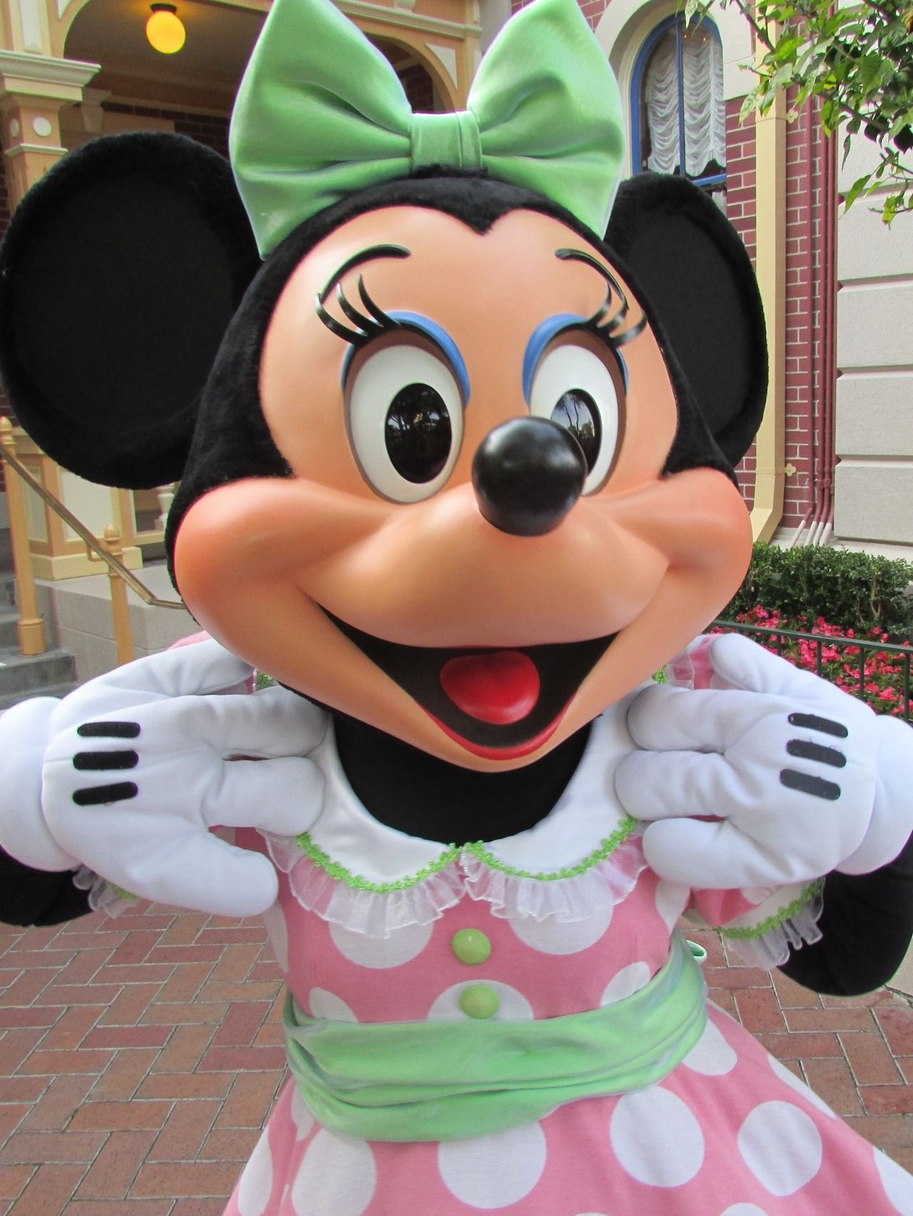 Minnie Mouse!  Oooooh I just love her to pieces!!  Soooo stinkin cute!http://mousetalestravel.com/aimee-best-quote-form/