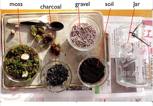 Diy Terrarium Supplies Jar Soil Gravel Charcoal Moss And Plants