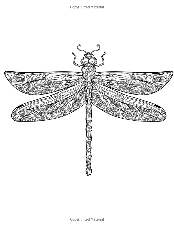 Adult Coloring Books Magical Dragonflies Coloring Books