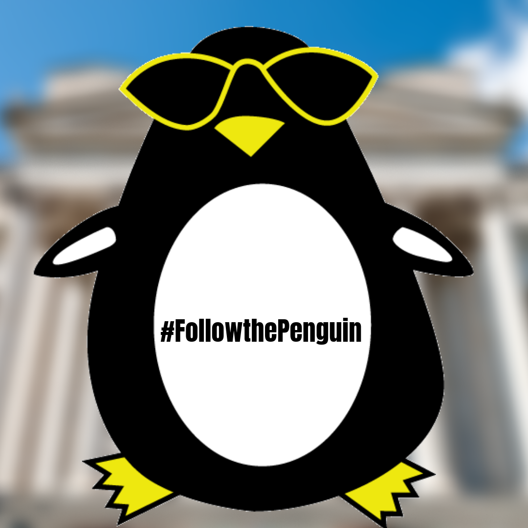 Followthepenguin Where Is The Chatham Penguin Today Be The First
