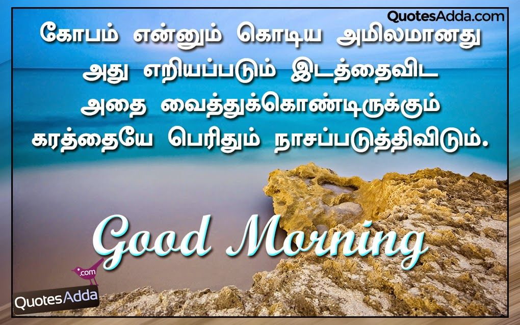 Here is a New Tamil Language Good Morning Fresh Wishes with Nice