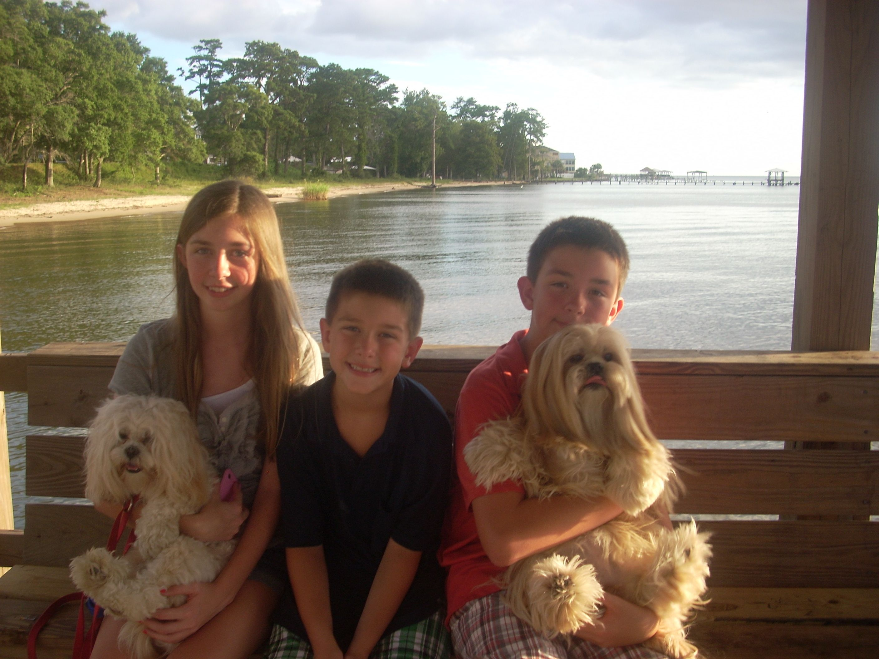 Lauren, Goldilocks, Andrew, Emory and Pollyanna. Who said Lhasa's are not great with kids????