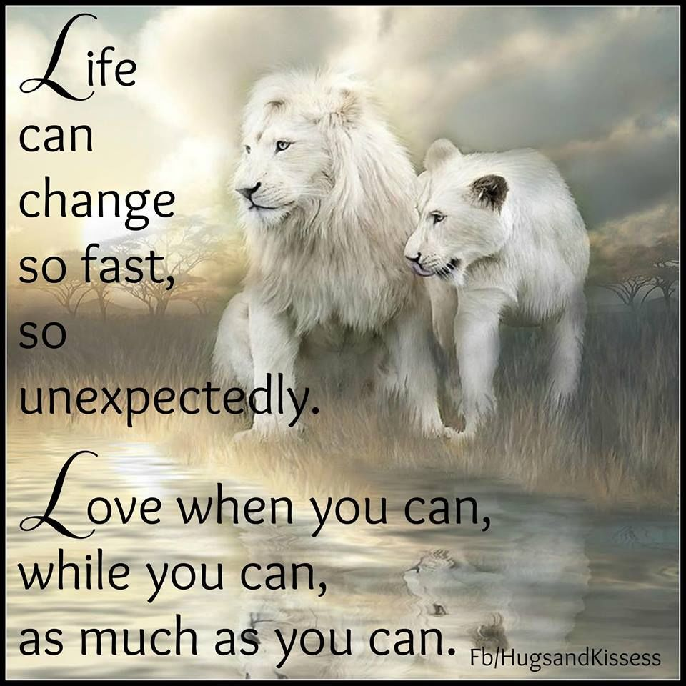 Life Can Change So Fast Love While you Can  Inspirational quotes