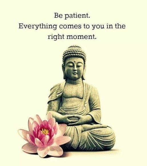 Buddhist Quotes On Time: Image Result For Buddha Quotes On Karma