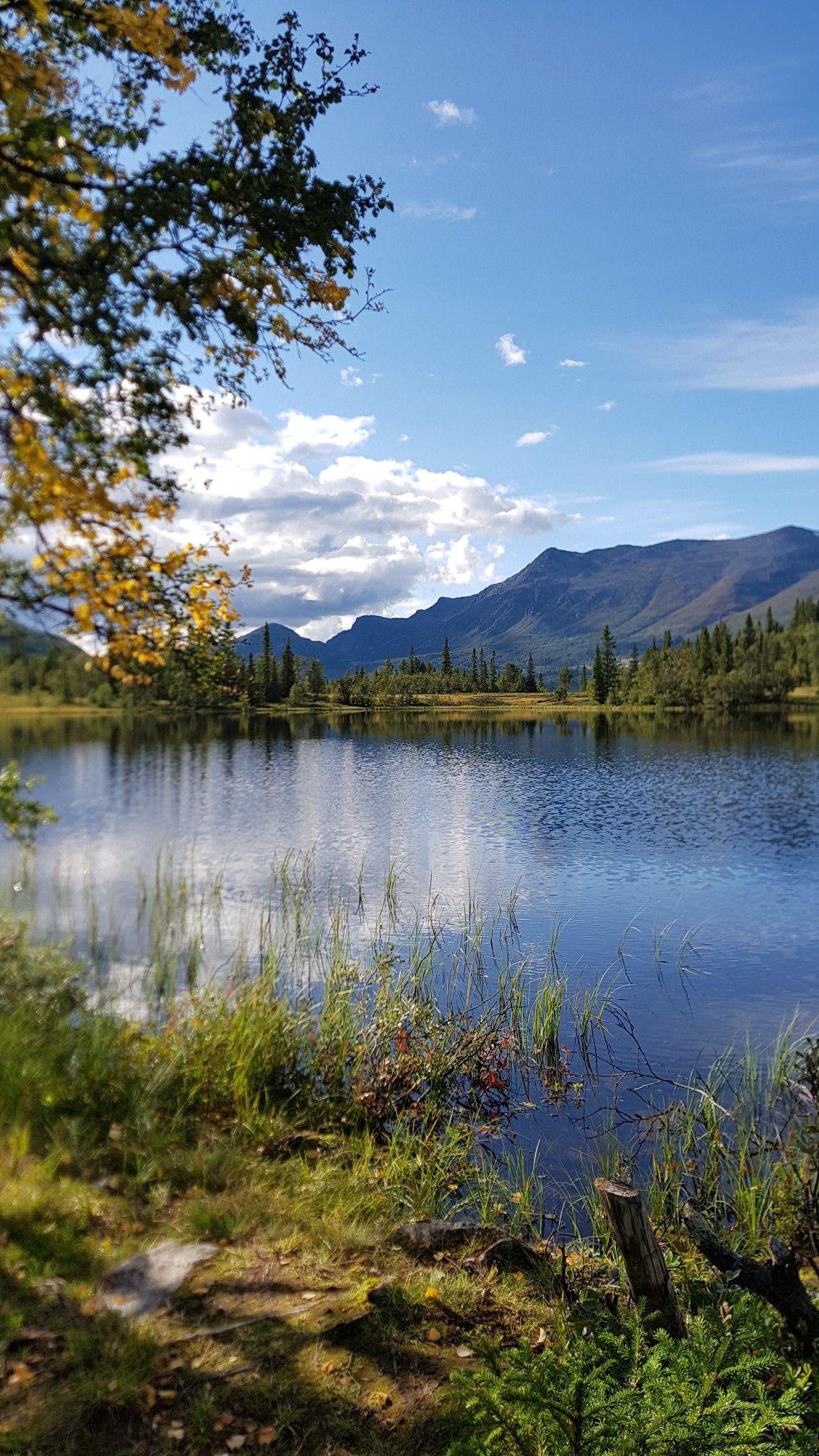Ssɛaʊ Fʊl Cool Landscapes Nature Pictures Landscape Scenery