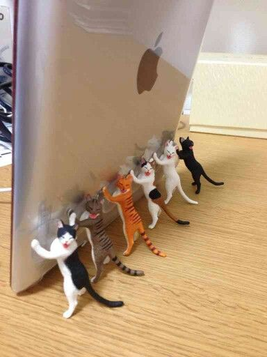 cat stopper - Oh boy, I need one of these!!!