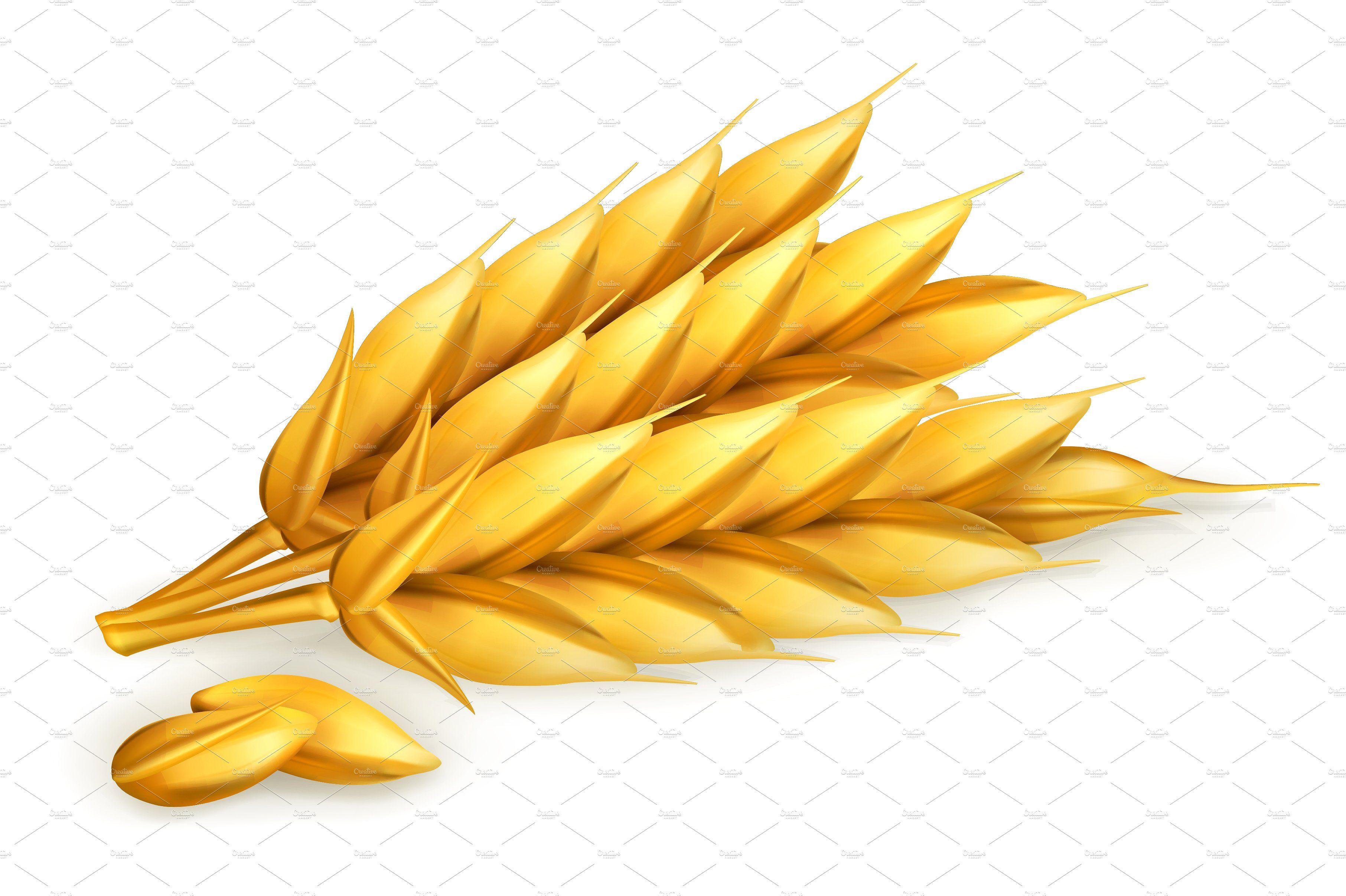 Wheat, oat, grains, vector icon set (Görüntüler ile) Resim