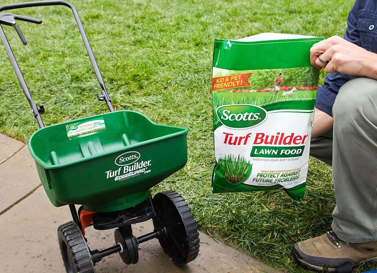 10 Low-Cost Solutions for an Ugly Lawn | Products: Bob
