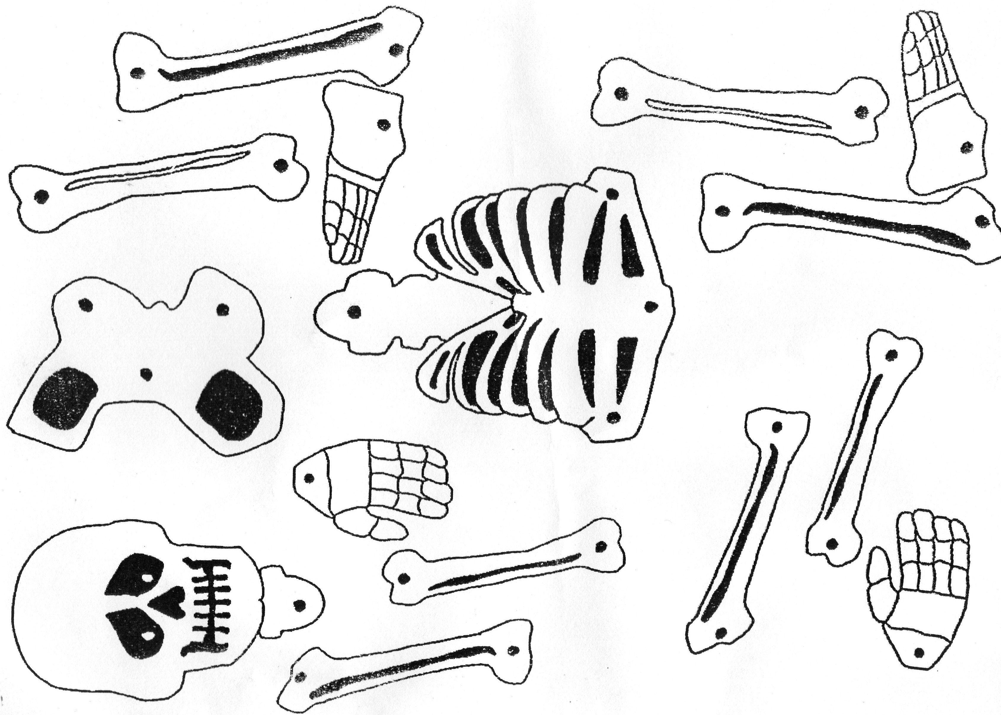 Puzzle De Esqueleto