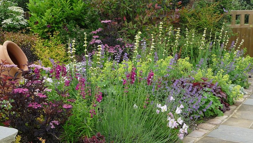 designing and mixing all shade plants on a slope - Google ...