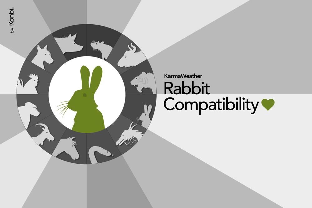Rabbit 2018 Chinese Horoscope Year of the Rabbit's 2018