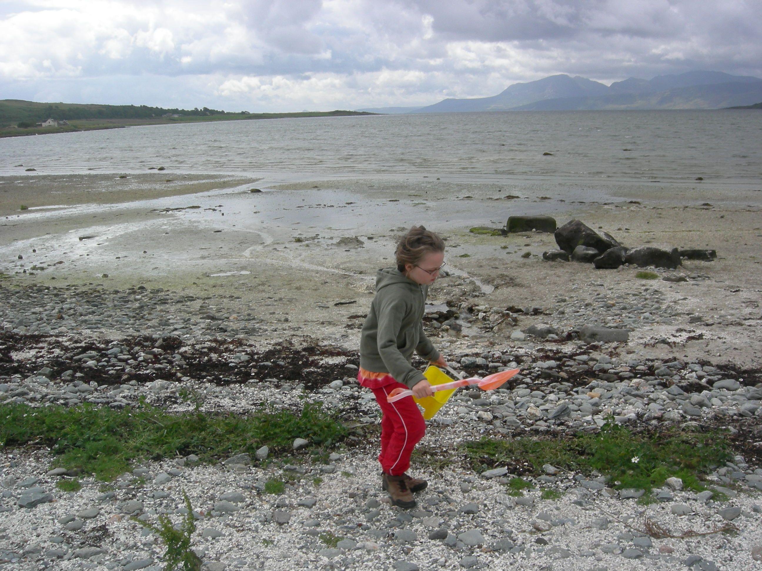beach comber Isle of Bute 2012