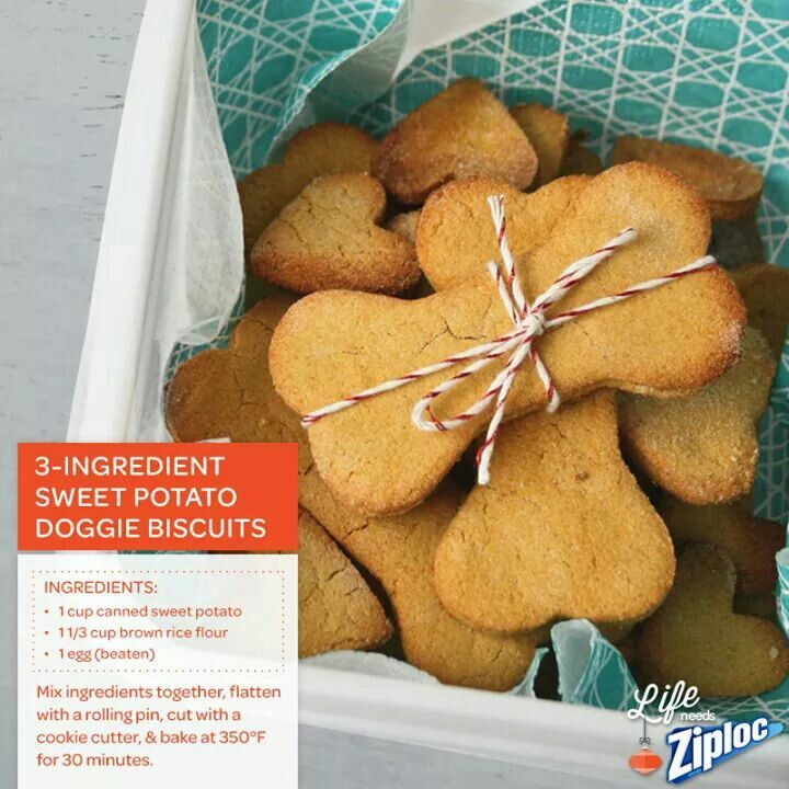 3 Ingredient Sweet Potato Dog Biscuits Sweet Potato Dog Treats