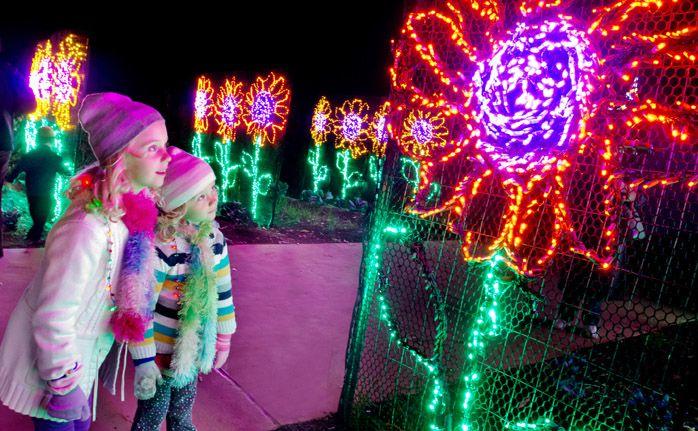 Experience The Atlanta Botanical Garden As Never Before