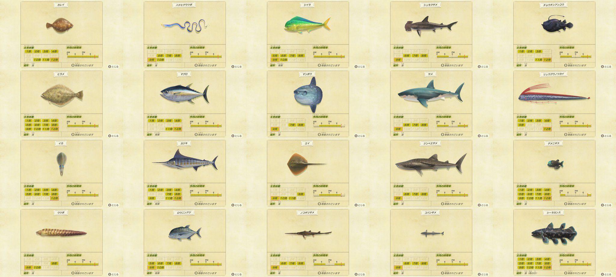 あつ森 7月の魚