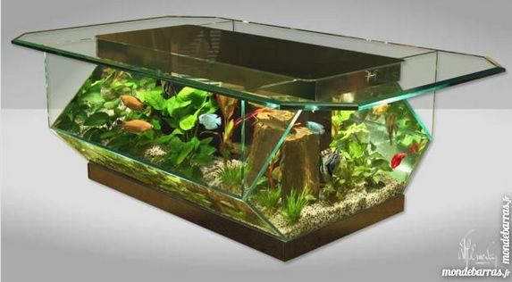 2 en 1 une table basse aquarium plut t originale et. Black Bedroom Furniture Sets. Home Design Ideas