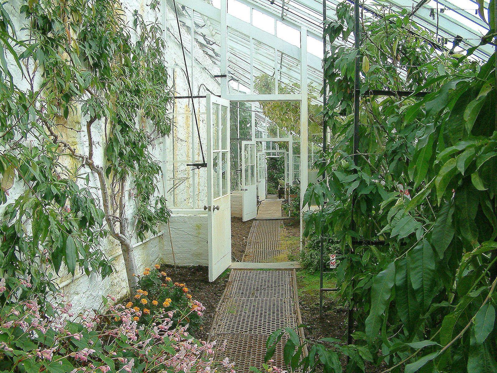 Clovelly Court - my ideal garden