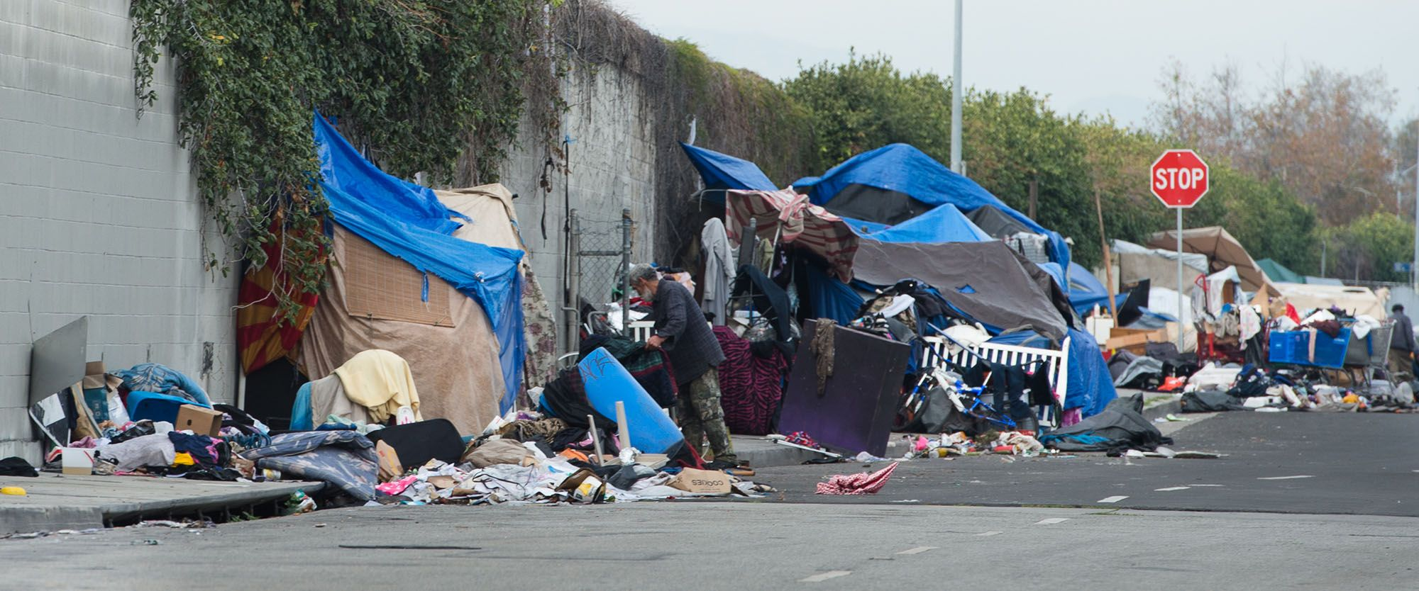 Report Homelessness In Los Angeles Has Surged By 75 Percent In Six Years Blunt Force Truth Homeless Los Angeles Help Homeless People