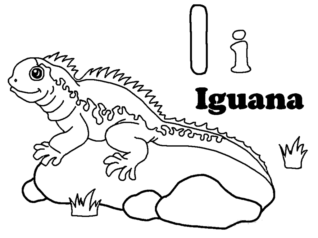 Nice Free Iguana Free Coloring Pages