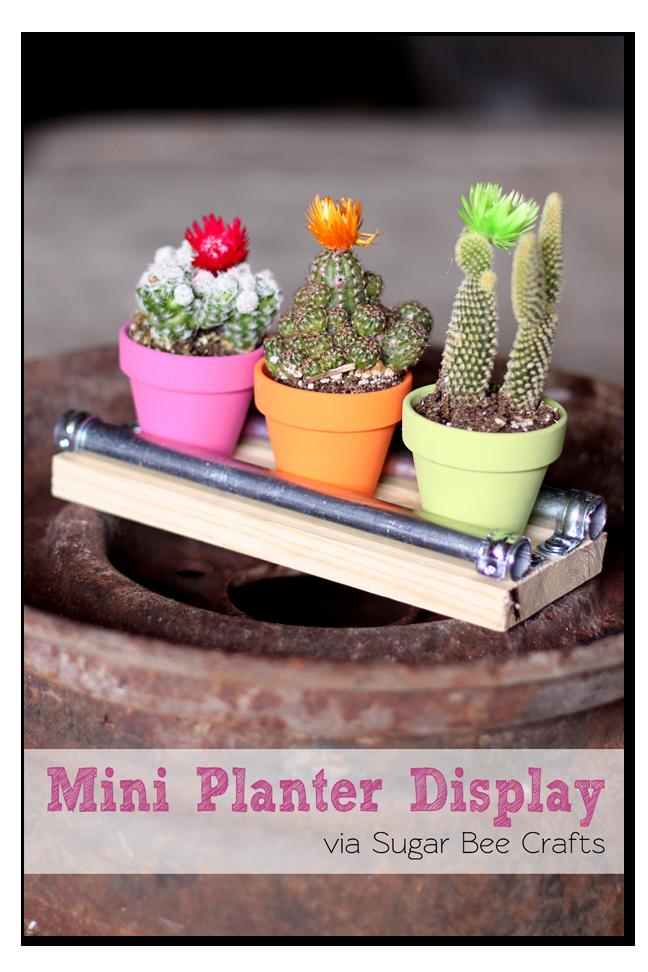 Mini Planter Display Fairy Garden Diy Bee Crafts Planters